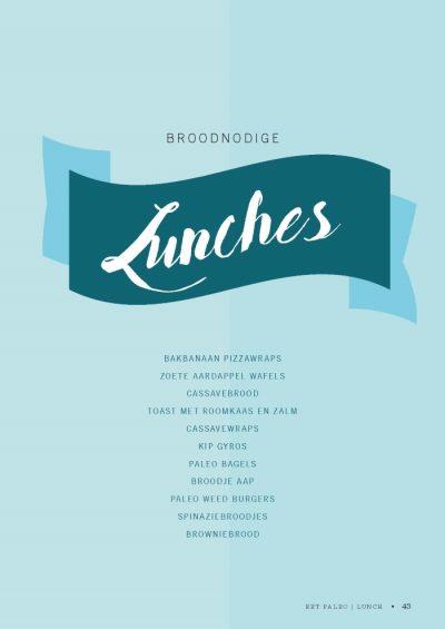 Paleo Lunch kookboek suikervrije, lactosevrije en glutenvrije lunch recepten meenemen werk school makkelijk simpel lunchtrommel
